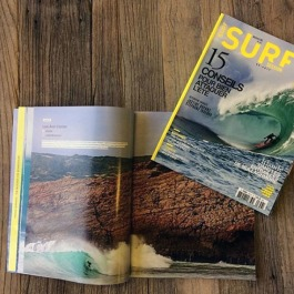 surf session spread